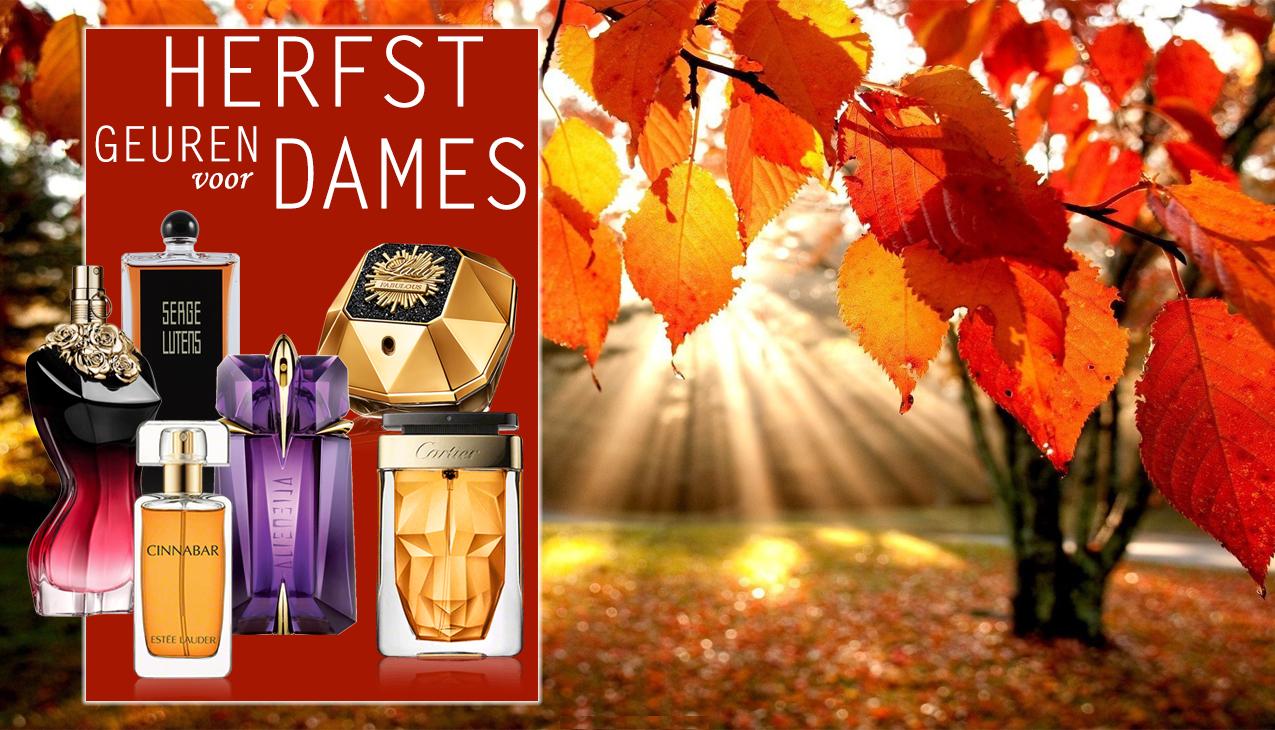 Geniet van de herfst in al zijn kleuren en geuren!