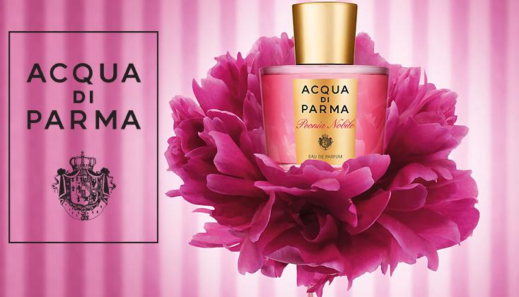 Peonia Nobile, een vibrerend, tijdloos en geraffineerd bloemenboeket