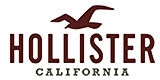 Hollister heren logo
