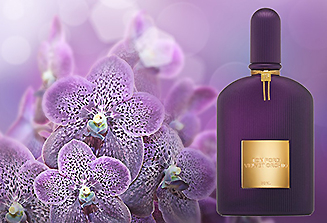 Velvet Orchid (Lumière)