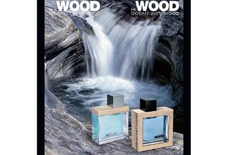 Ocean Wet Wood