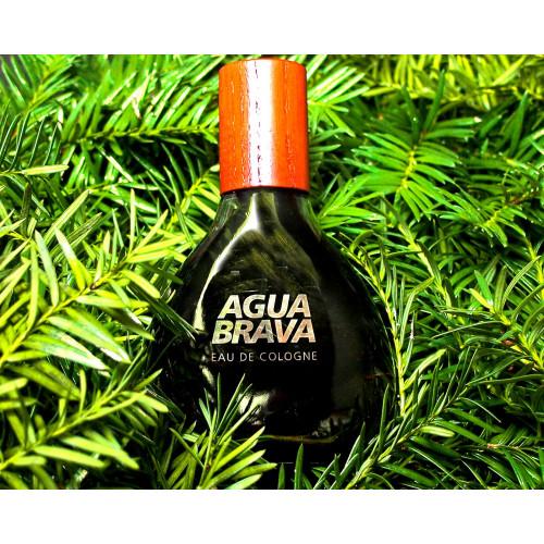 Puig Agua Brava 100ml eau de cologne spray
