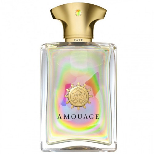 Amouage Fate Man 100ml eau de parfum spray