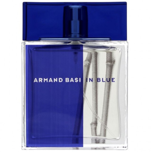 Armand Basi In Blue 100ml eau de toilette spray