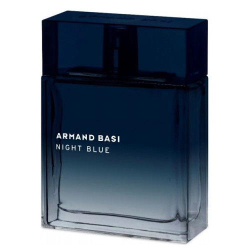 Armand Basi Night Blue 100ml eau de toilette spray