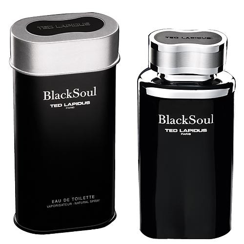 Ted Lapidus Black Soul 100ml eau de toilette spray