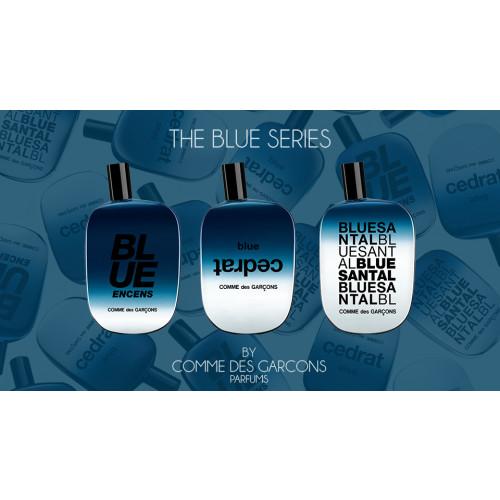 Comme des Garcons Blue Santal 100ml eau de parfum spray