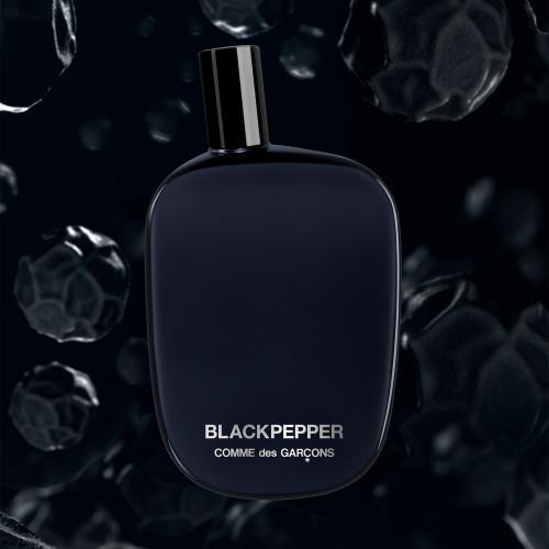 Comme des Garçons Blackpepper 100ml eau de parfum spray