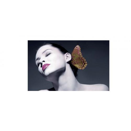 Hanae Mori Butterfly 100ml eau de parfum spray