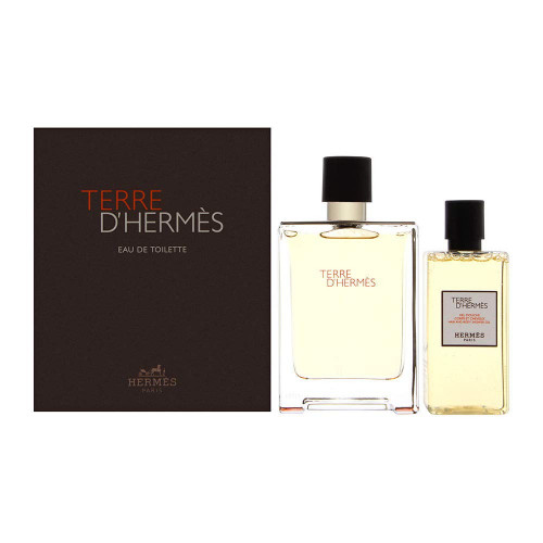 Hermès Terre d'Hermès Set 100ml eau de toilette spray + 80ml Showergel
