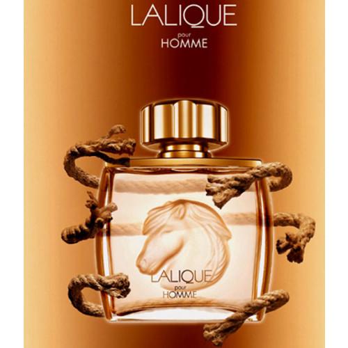 Lalique Pour Homme Equus 75ml eau de parfum spray