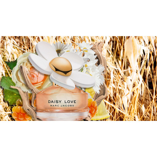 Marc Jacobs Daisy Love Set 100ml eau de toilette spray + 75ml Bodylotion + 4ml edt miniatuur