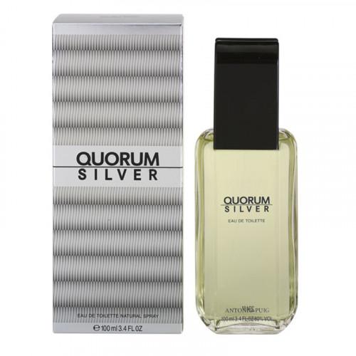 Puig Quorum Silver 100ml eau de toilette spray