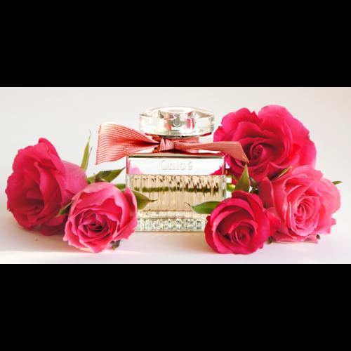 Chloé Roses de Chloé 30ml eau de toilette spray