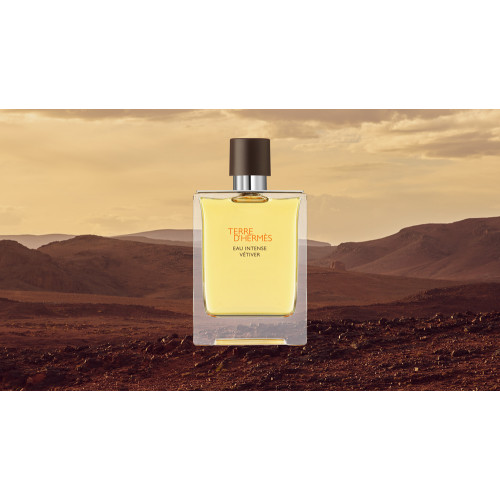 Hermes Terre d'Hermes Eau Intense Vetiver 30ml eau de parfum spray + 125ml edp Refill