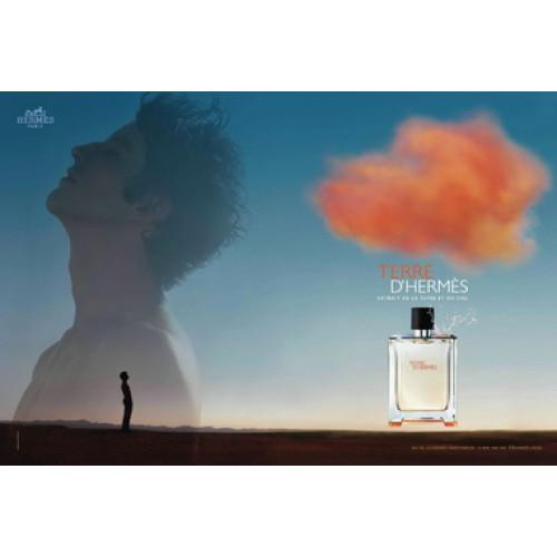Hermès Terre d'Hermès Set 100ml eau de toilette spray + 80ml Showergel
