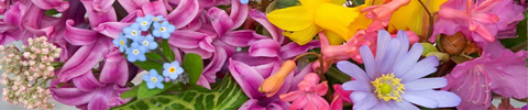 Florale geuren
